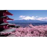 Что кроме суши и роллов едят в Японии!
